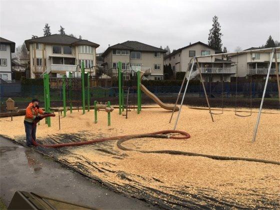 Belle Morse Park