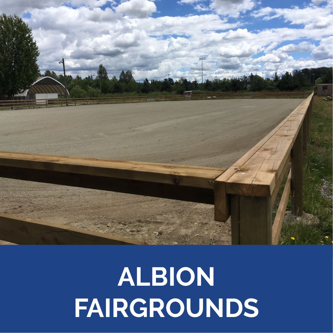 Albion Fairgrounds - Button