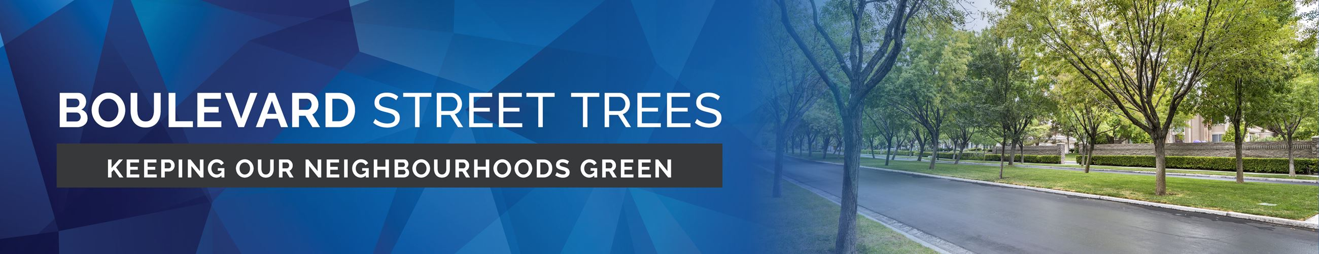 Boulevard Street Trees Page Banner