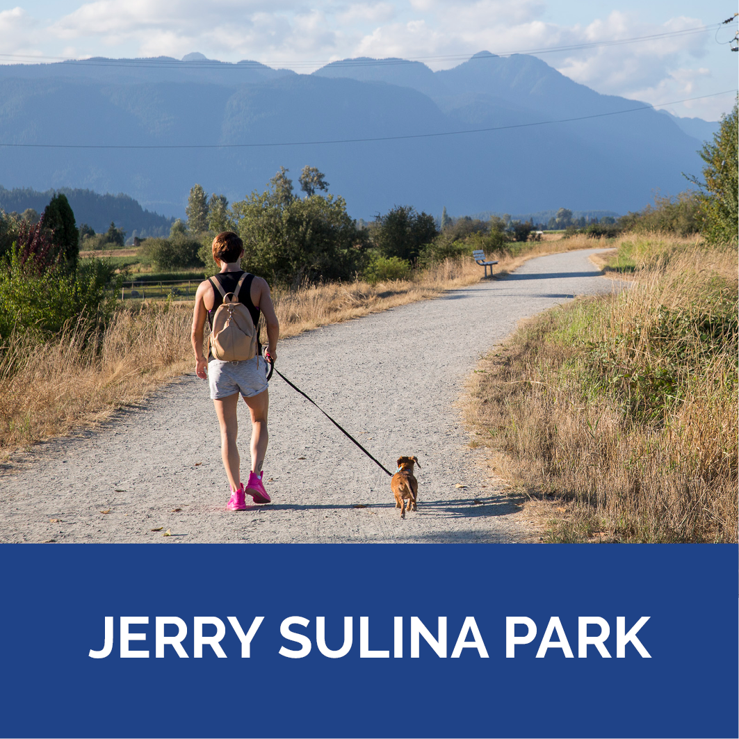 Dog Park Jerry Sulina Park