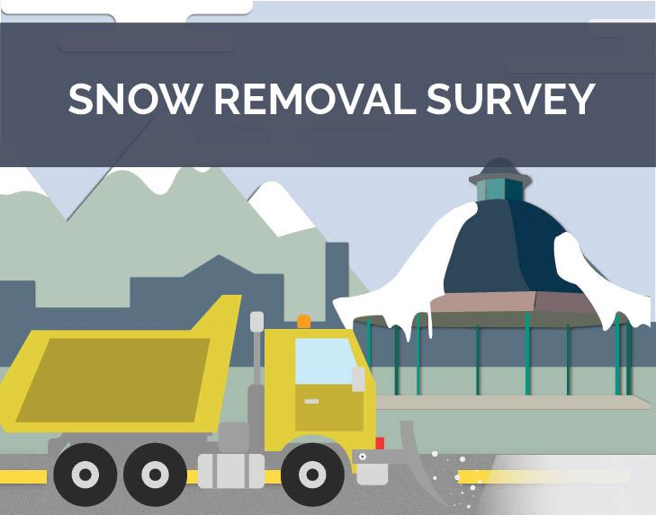 snow removal survey_spotlight