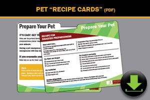Pet Recipe Cards