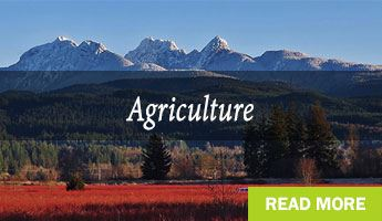 Maple Ridge Agriculture