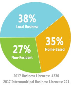 # of Business Licences (2017): 4551